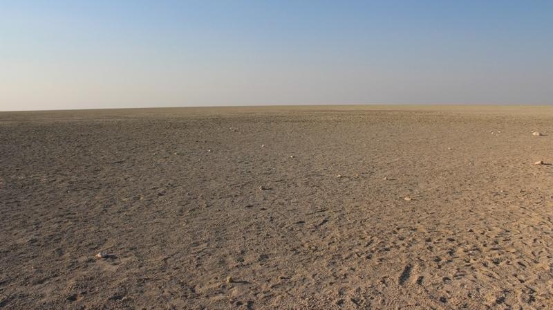 Namibia | Etoscha-Pfanne