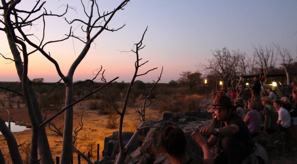 Namibia | Halali Rest Camp