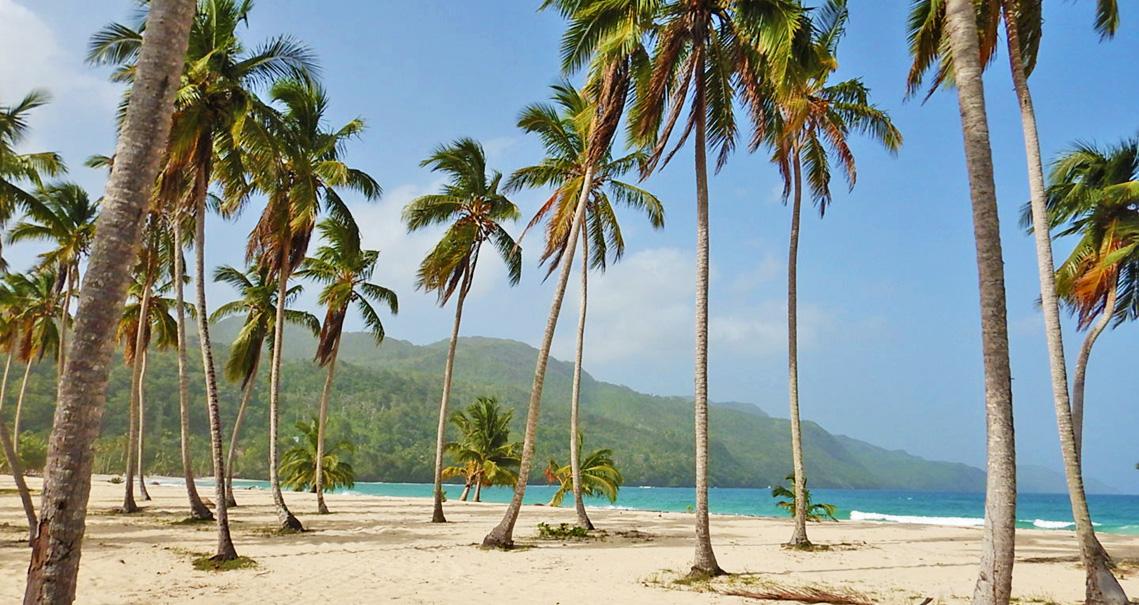 Playa Rincon - Samaná