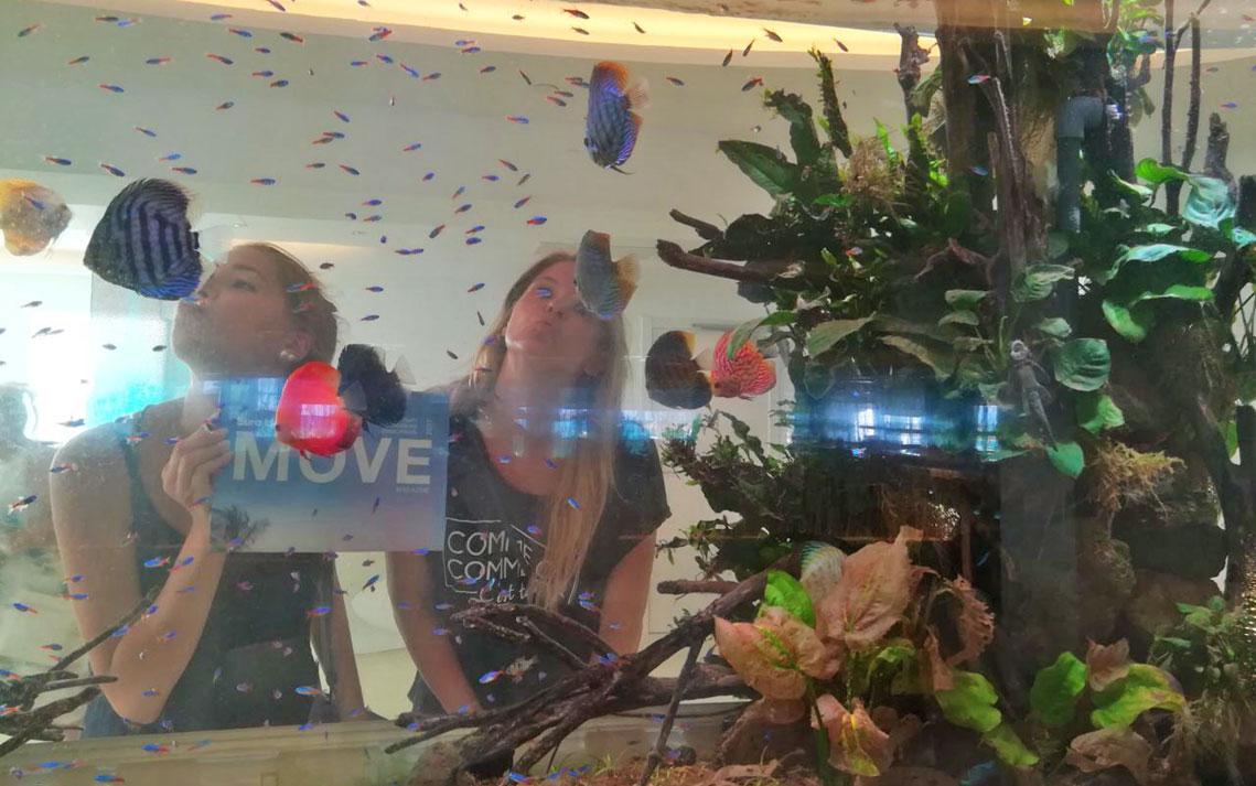 MOVE im Aquarium
