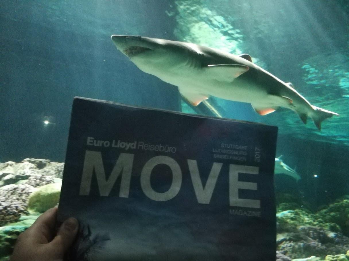 Move on Tour | Sea World Resort