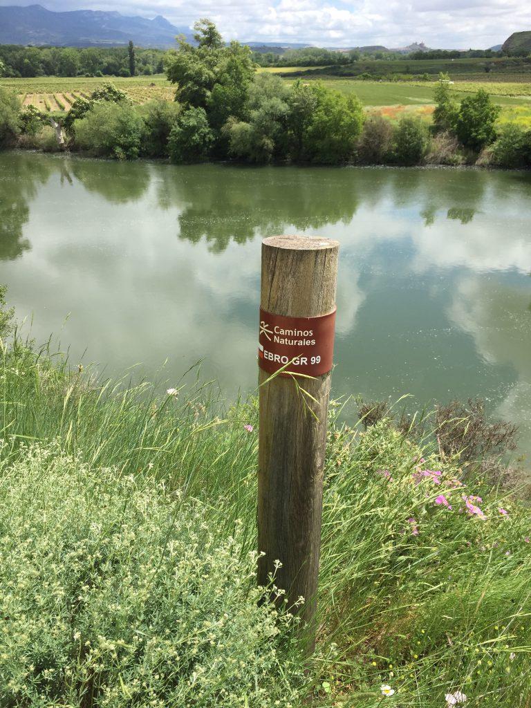 Der Río Ebro inmitten der Weinregion Rioja