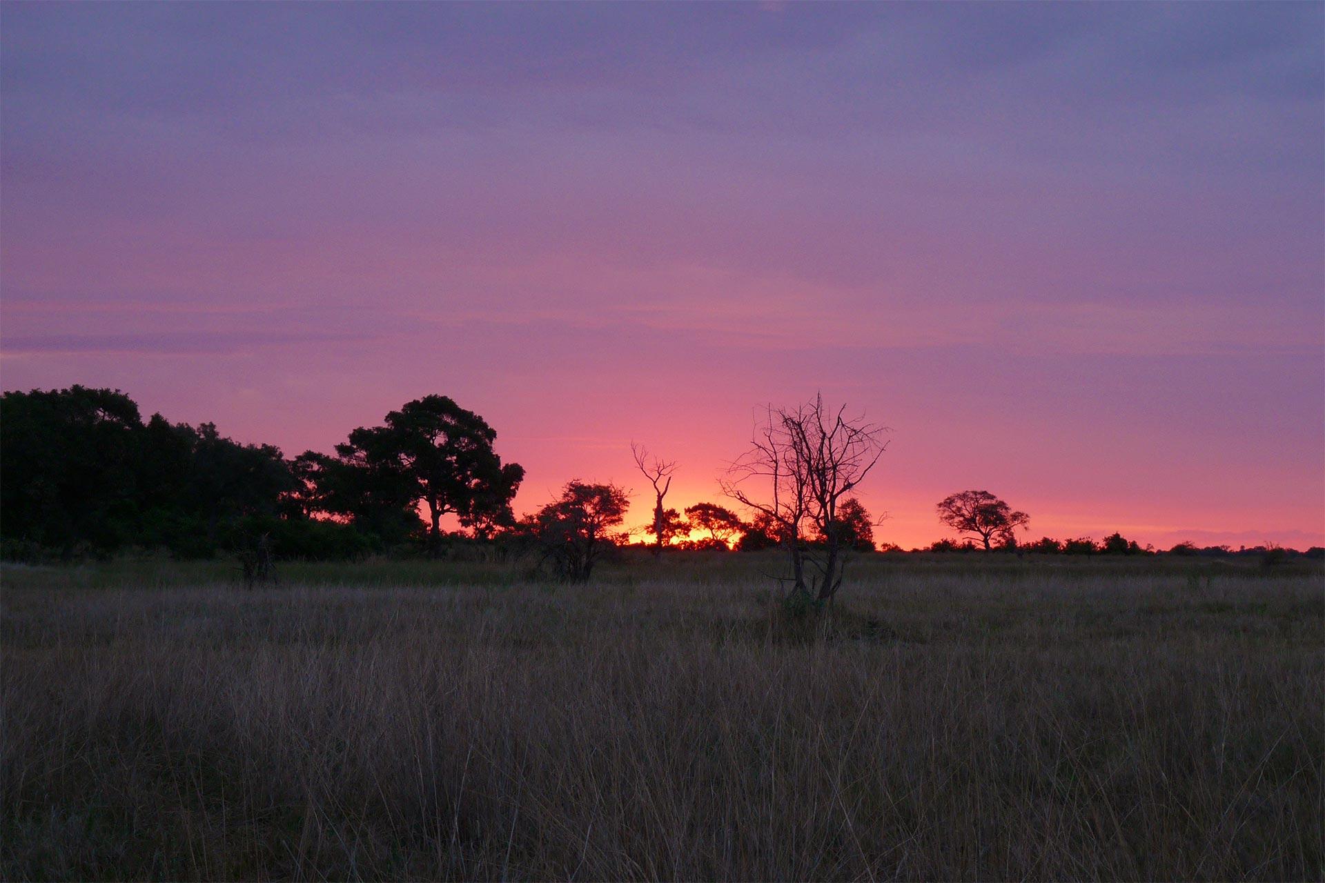 Botswana - Okawango Delta - Dämmerung