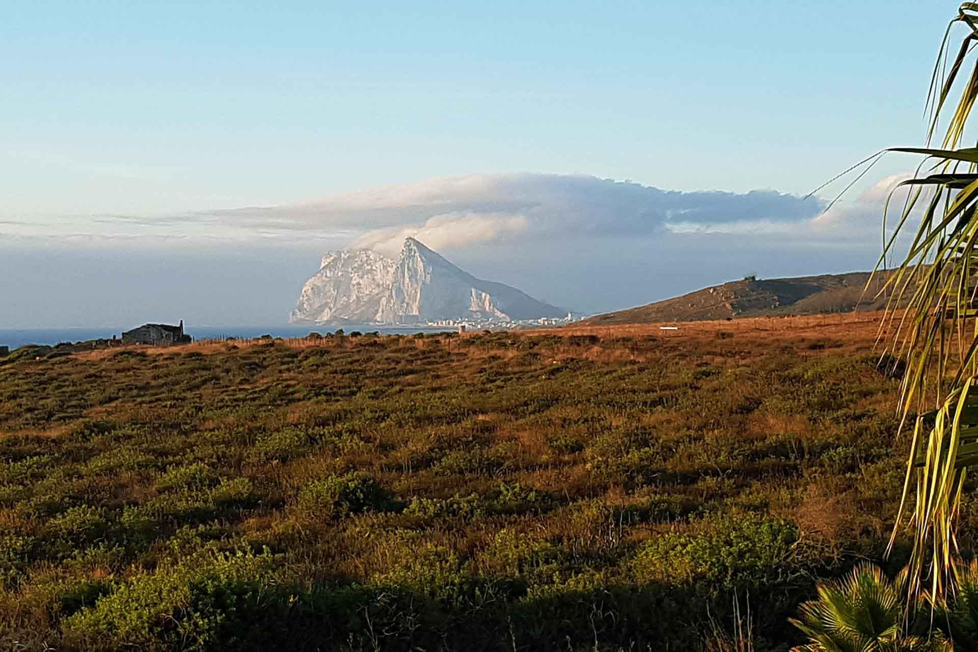 Affenfelsen-von-Gibraltar