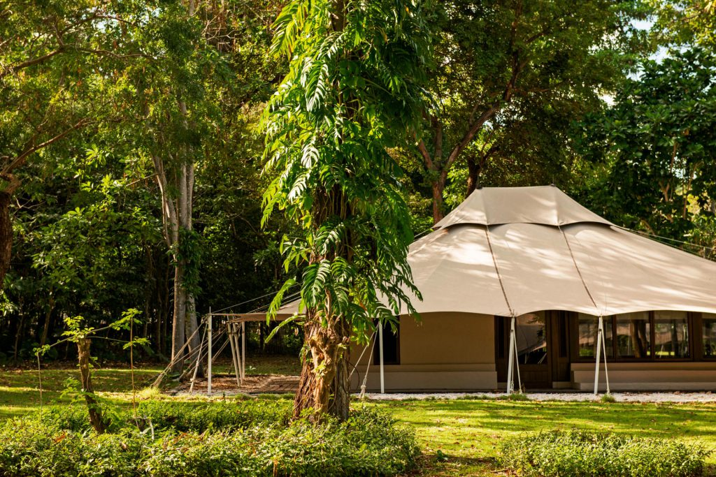Dschungel Zelt
