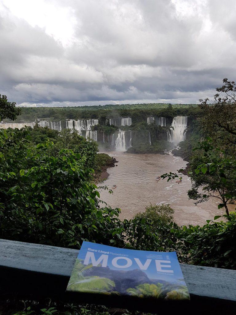 Move in Iguazu