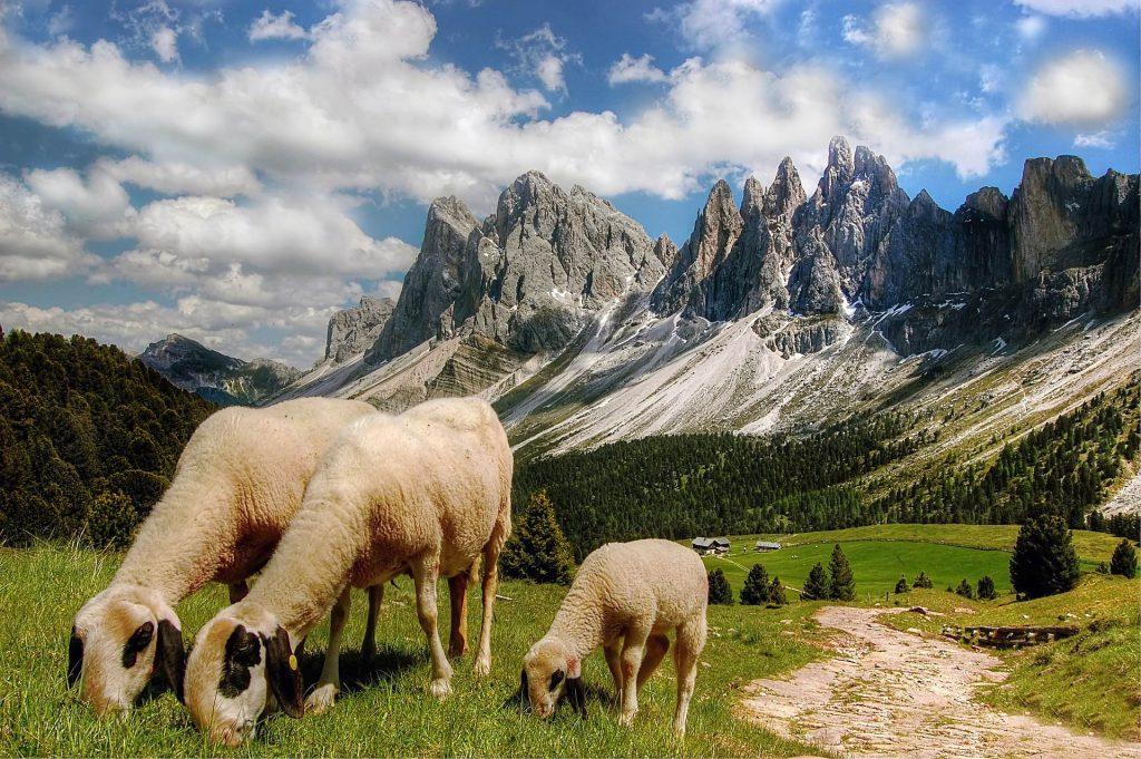 Gebirgsgruppe Südtirol