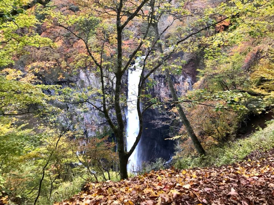 Kegon Wasserfall im Nikko Nationalpark