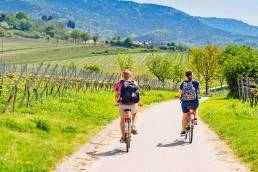 Gebeco Radreisen in Deutschland